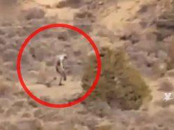 Aparece nuevamente ser demoníaco en el desierto de Mexicali