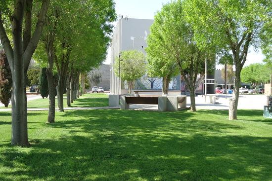 Área verde CETYS Preparatoria