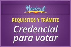 Requisitos y trámite de la Credencial para votar